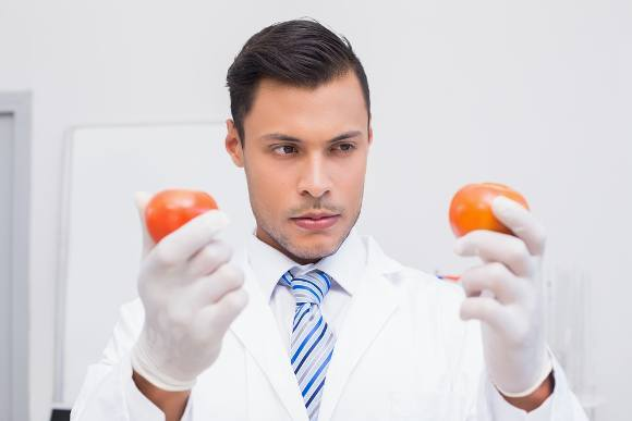 Male Scientist Looking at Genetically Modified Tomato