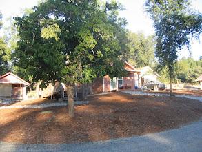 Photo: Yoga Farm, CA - New luxury cabins