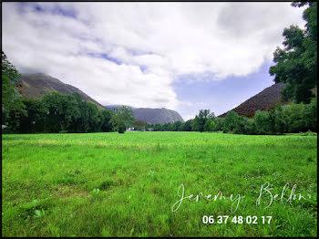terrain à Louvie-Juzon (64)