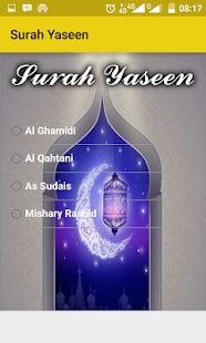 Surah Yaseen Audio Mp3 - náhled
