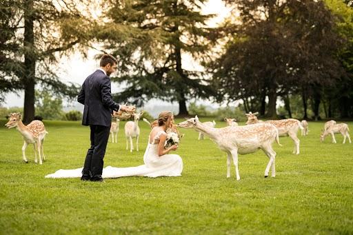 Fotografo di matrimoni Ivan Redaelli (ivanredaelli). Foto del 31.05.2018