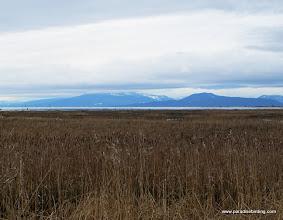 Photo: Fir Island and Puget Sound, Washington