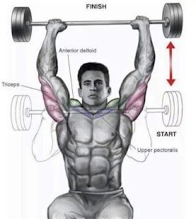 tutoriel musculation et fitness - náhled