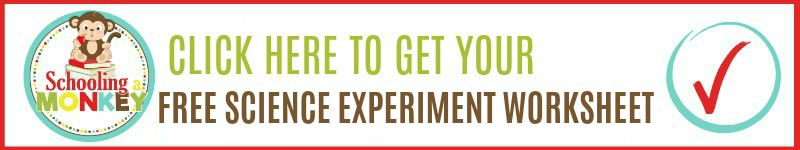 science experiment worksheet