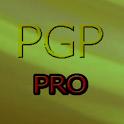 PGP pro G. Proyectos Bilingue icon