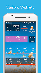 Accupedo-Pro Pedometer Screenshot