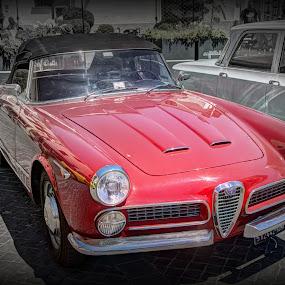 Alpha Romeo  by Doug Faraday-Reeves - Transportation Automobiles ( classic, car, italin, alfa romeo )