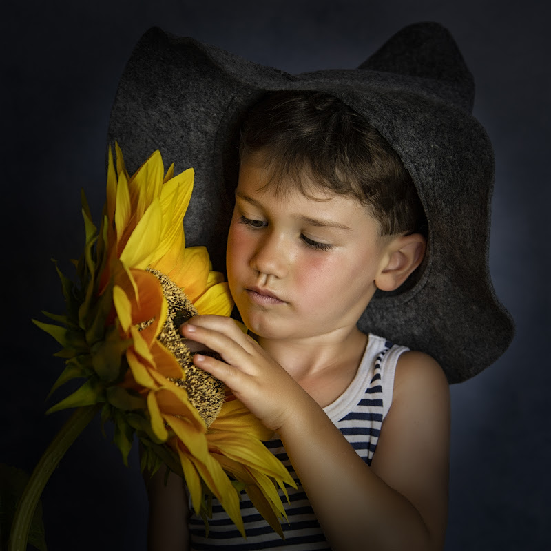The boy and the sunflower di fairy-of-fireflies