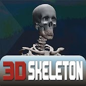 3D Skeleton FineTouch - Lite