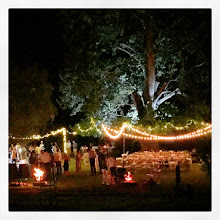 Photo: Under the oak tree and under the stars - perfect.