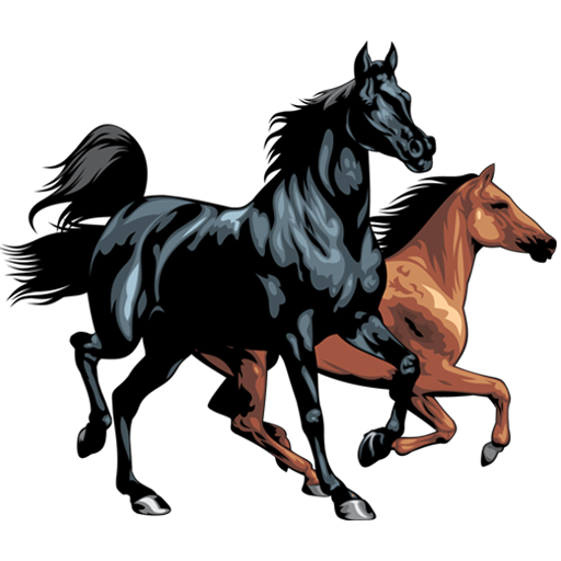 Horse Breeds - Photos Android APK Download Free By 24Hours