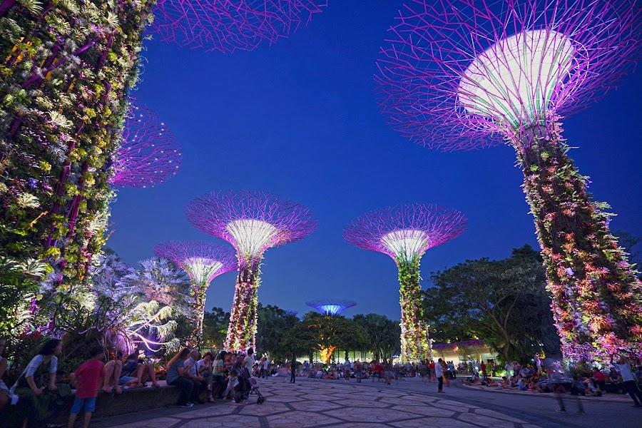 Garden by the Bay by Mulawardi Sutanto - City,  Street & Park  Night ( giant tree, singapore, keren, banget, mantap, night, garden by the bay, travel )
