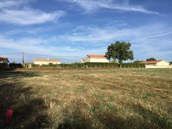 terrain à Genouillac (16)