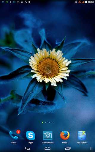 Blue flower. Live wallpaper