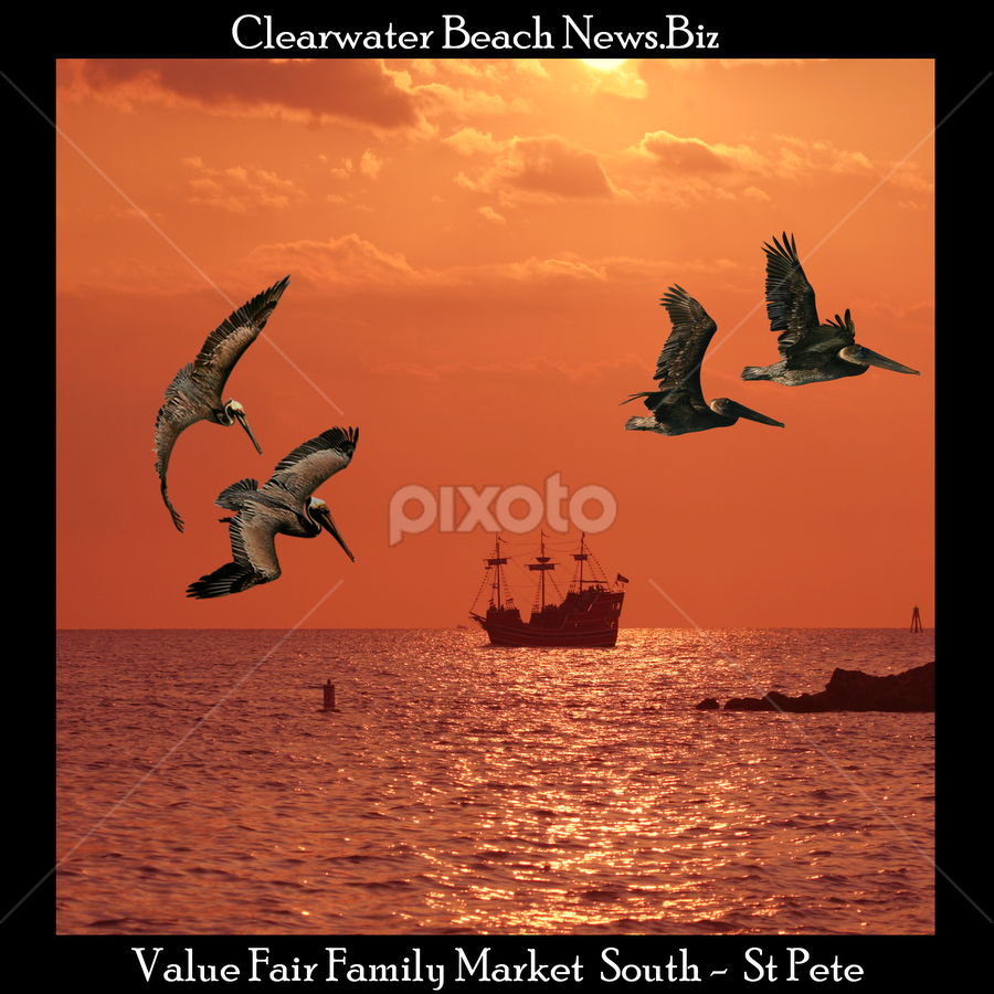 { Cover ~ July 2011 Clearwater Beach News }  by Jeffrey Lee - Typography Captioned Photos ( { cover ~ july 2011 clearwater beach news },  )