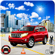 Prado Parking 2018 (game)