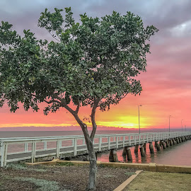 Pink sunrise by Taz Graham - Novices Only Landscapes ( ocean, jetty, sunrise, landscape )