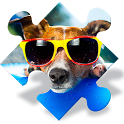 Dogs Jigsaw Puzzle Games icon
