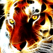 Tiger glows live wallpaper