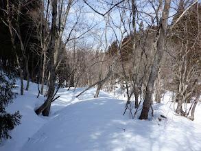 林道は雪に埋もれ