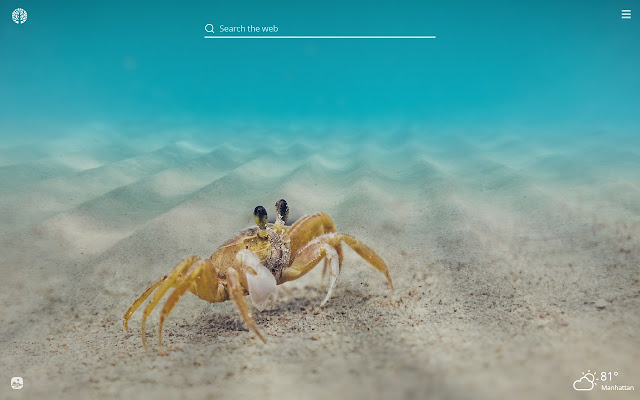 Crabs HD Wallpapers New Tab Theme