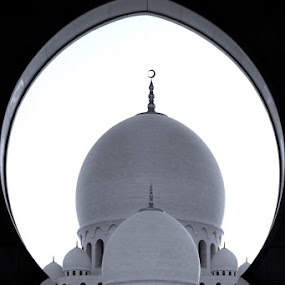 Sheikh Zayed Mosque by Manoj Kumar Kd - Buildings & Architecture Places of Worship ( uae, sheikh zayed mosque )