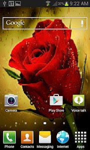 Rain Drop Rose LWP screenshot 1