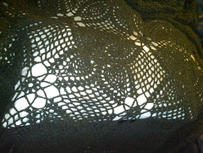 Photo: This afghan would look gorgeous on my mom's white leather couch, but I'm having a hard time taking a picture of it since most everything in my apartment is darkly coloured and so is this. Here I laid it on a pillow to see a bit of the pattern.