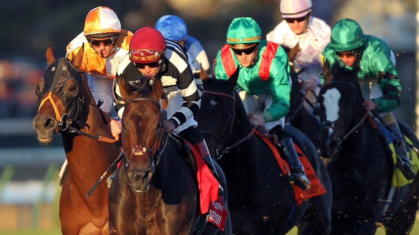 Watch Betting the Breeders' Cup live
