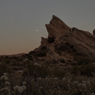 Rock formation and flower field at dusk