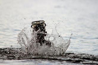 Photo: Big splash at Boulder Beach State Park by Lene Gary