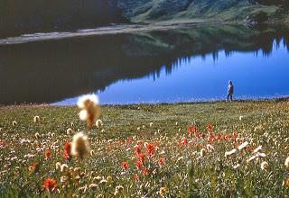 Photo: 55. Meadows around Image Lake.