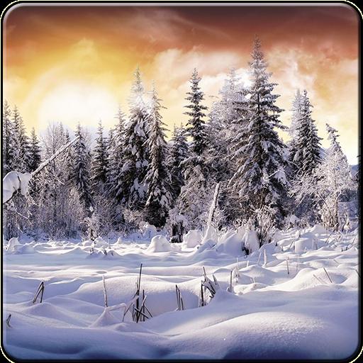 冬の壁紙2016 個人化 App LOGO-APP開箱王