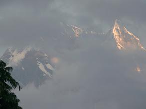 Photo: Morgengrauen an den Nilgiris...
