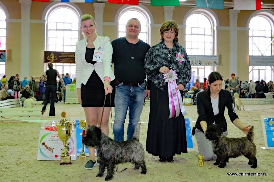 Фото с выставки керн-терьеров и участников