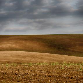 7818 by Jani Novak - Landscapes Travel