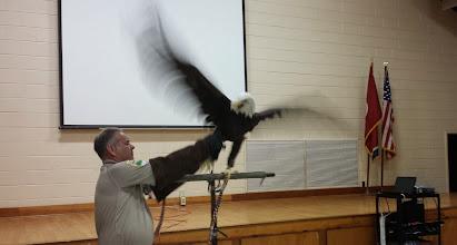 Photo: Captain Bly an American Bald Eagle