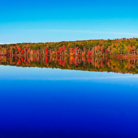 Reflections by Jeff McVoy - Landscapes Waterscapes ( water, reflection, lake, leaves, woods, forrest, tree, autumn, blue, color, fall, trees, pond,  )