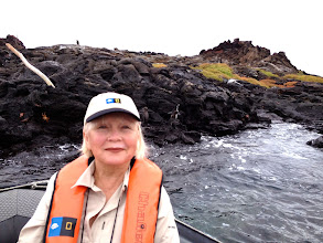Photo: Mom and Penguins in background