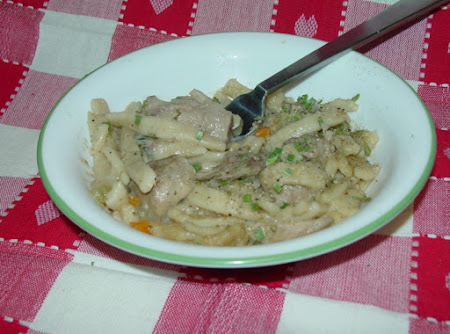 Mom's Old Fashioned Turkey and Noodles Recipe