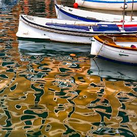 by Alessandro Scacchetti - Transportation Boats