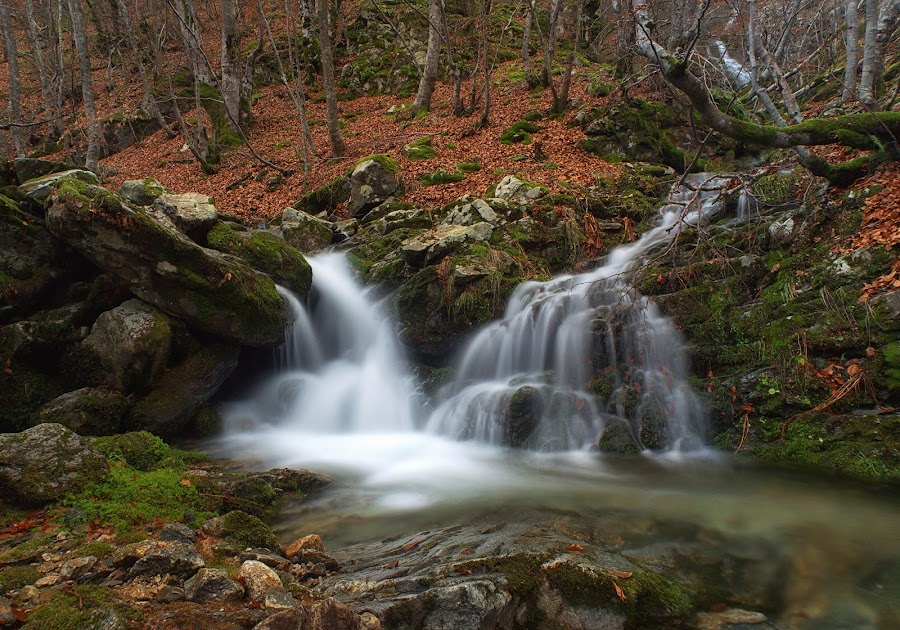 across the river by Mehmed Mestanov - Nature Up Close Water ( water, waterfall, stone, forest, river )