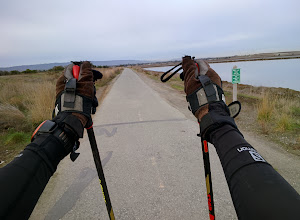 Photo: 14 mile morning roller ski. Drawing inspiration from the Olympic cross country & biathlon races. #crosscountryskiing  #throughglass  http://www.movescount.com/moves/move26082110