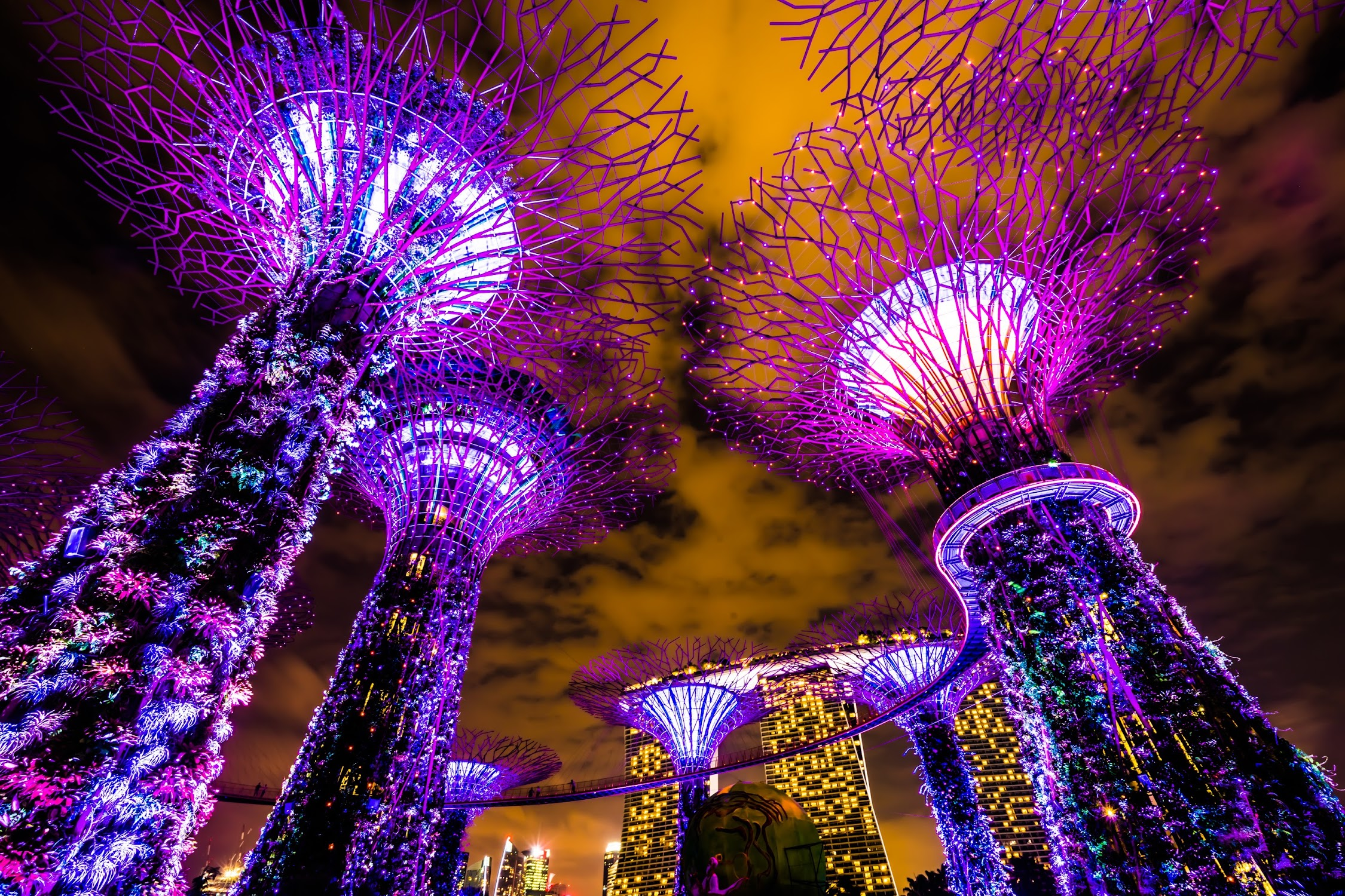 Gardens by the Bay OCBC Garden Rhapsody2