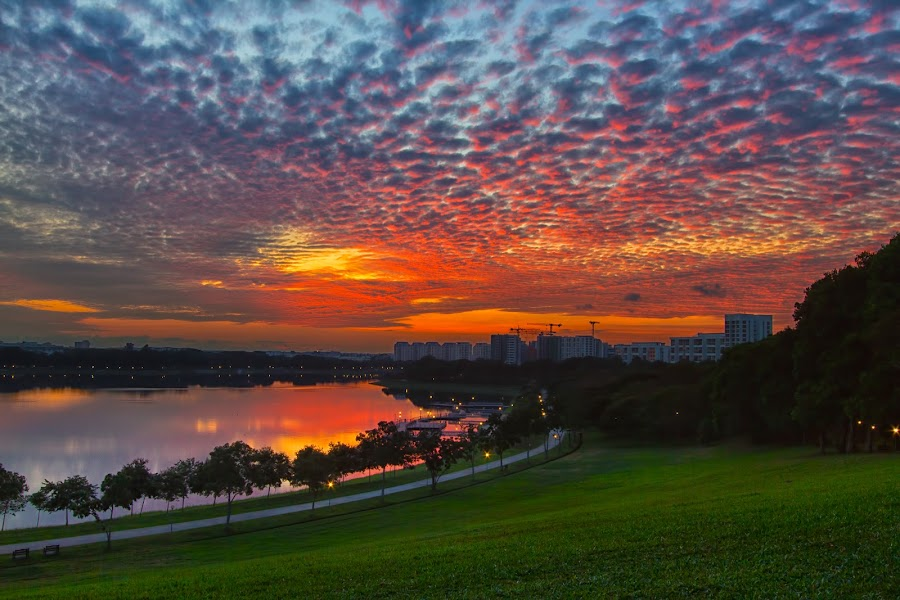 Morning Beauty Pink Clouds by Lb Chong Jacobs - Landscapes Cloud Formations ( pwcsunbeams-dq )