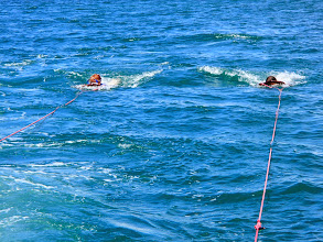 Photo: Monica and Charlotte being towed by the boat. When Mark and Genevieve did it there was a dolphin swimming under them and they could hear the squeaks of the pod. We could hear the squeaks but the dolphins had moved away from the boat a bit.