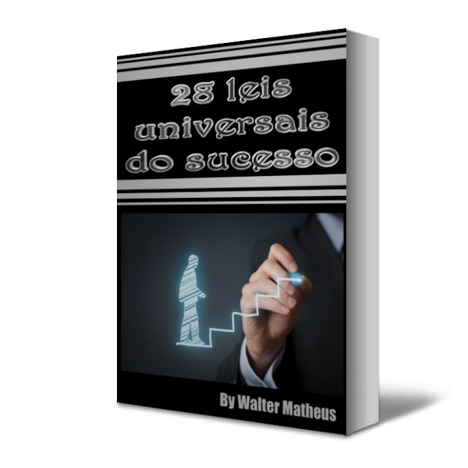 28 Leis Universais De Sucesso Frete Grátis