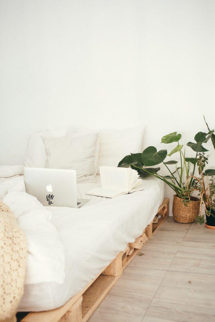 Dormir con plantas puede ayudarte a dormir mejor