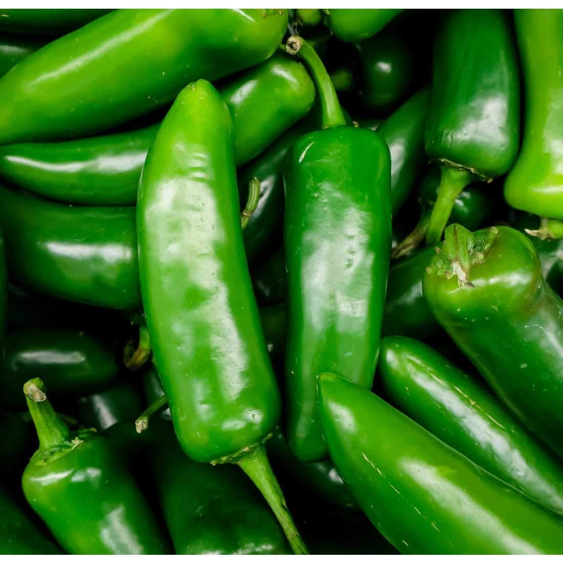 Large pile of green jalapenos.