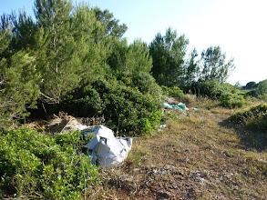 Photo: Fems tirats en un camp a la sortida de Binidalí